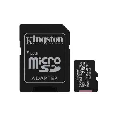 Memorijska_kartica__Kingston_SD_MICRO_256GB_Class_10_UHS-I_Plus_0.jpg